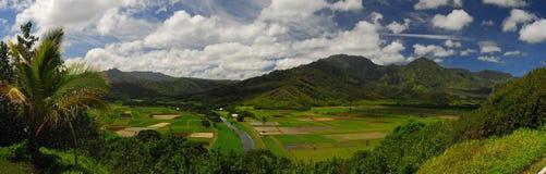 Panoramische Ansicht in Hawaii Lizenzfreie Stockfotos