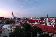 Panoramische Ansicht Tallinn-des alten Stadtzentrums Lizenzfreies Stockbild