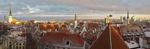 Panoramische Ansicht von Tallinn, Estland lizenzfreie stockfotos