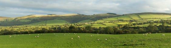 Panoramische Ansicht Waliser-Landschaft nahe Garth. Stockfoto