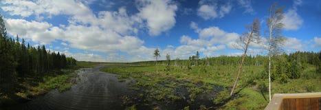 Panoramische Aussicht über einem schwedischen See nahe Tullingsaas Stockbilder