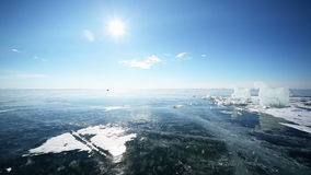 Panoramische Bewegung entlang dem Eis-Pferd stock video