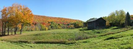 Panoramische de herfst royalty-vrije stock foto