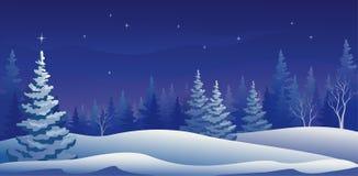 Panoramische de winternacht stock illustratie