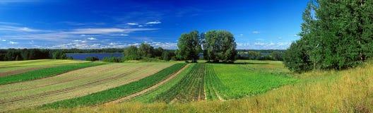 Panoramische de zomer royalty-vrije stock foto