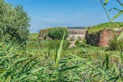 Panoramische grüne Waldlandschaft mit Anlagen und einem brickwall Lizenzfreies Stockfoto