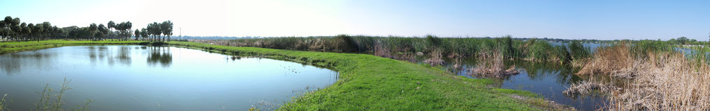 Panoramische het meer van Florida   Royalty-vrije Stock Fotografie