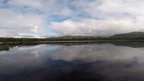 Panoramische meermening in de zomer met berg en bosachtergrond stock video
