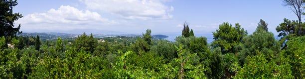 Panoramische Szene mit Wald auf Korfu-Insel, Griechenland stockbilder