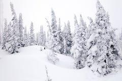 Panoramische toneelmening vanaf bovenkant van de winter van berglandschappen val stock foto's