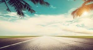 Panoramische tropische Straße und Palmen stockbilder
