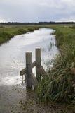 Panoramische typische niederländische Sumpfgebiete Stockfotos