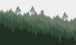 Panoramische Vektorillustration eines Waldes unter einem bewölkten Grau lizenzfreie abbildung