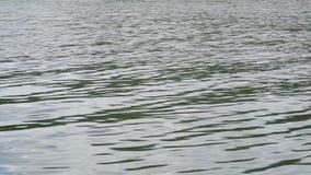 Panoramische video van de oppervlakte van het water met kleine golven stock videobeelden