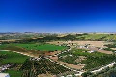 Panoramische Vogelperspektive von der Hochebene von Ronda auf endloser ländlicher Ebene mit Olivenhainen und Erntefeldern unter b lizenzfreie stockfotos