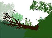 Panoramische Waldlandschaft mit gefallenem Baum, Büschen und Vögeln Lizenzfreies Stockfoto