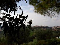Panoramischer Garten Lizenzfreies Stockfoto