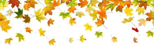 Panoramischer nahtloser Herbsthintergrund Stockbilder