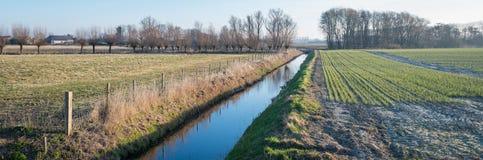 Panoramisches Bild von Feldern trennte sich durch einen Abzugsgraben Stockbild