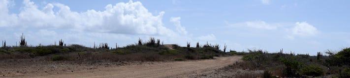 Panoramy droga gruntowa w Aruba pustyni Obrazy Royalty Free