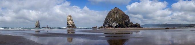 Panoramy działa plaży Oregon linia brzegowa obrazy royalty free