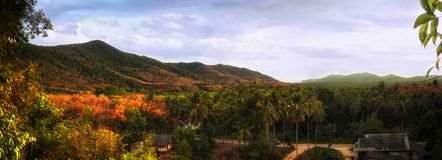 Panoramy góra lato zdjęcia royalty free