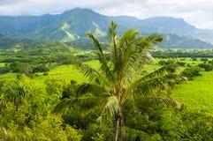Panoramy kawaii wyspy Hawaii zlani stany Zdjęcia Stock