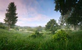 Panoramy lata krajobraz Zdjęcie Stock