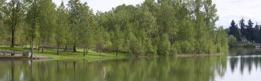 panoramy parkowy wa las Zdjęcie Royalty Free