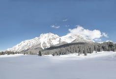 panoramy sceny śnieg Zdjęcia Royalty Free
