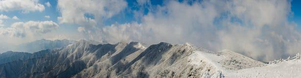 Panoramy zimy biały śnieżny tło z Denną mgłą jest pięknym krajobrazem, Sobaeksan góra w Korea Obrazy Royalty Free