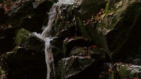 Panorera för vattenfalldetalj lager videofilmer
