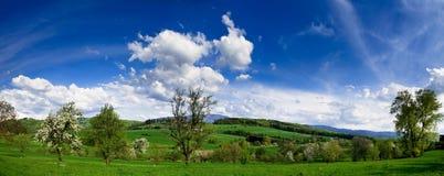 Panorma da paisagem da mola Fotografia de Stock Royalty Free