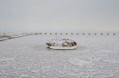 Panquecas gigantes do gelo Imagem de Stock