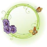 pansies рамки vector фиолет иллюстрация штока