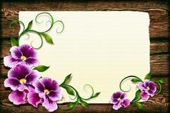 Pansies auf einem hölzernen Hintergrund Stockfoto