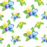 Pansies auf weißem background-01 Lizenzfreie Stockbilder