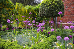 Flowerpots enchidos amor perfeito em um suporte de exposição Fotos de Stock Royalty Free