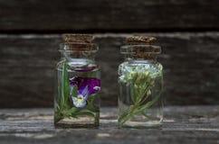 Pansies flower essential oil. Herbal medicine. Naturopathy. Pansies flower essential oil on wooden background. Herbal medicine. Naturopathy stock image
