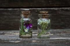 Pansies flower essential oil. Herbal medicine. Naturopathy. Pansies flower essential oil on wooden background. Herbal medicine. Naturopathy royalty free stock photo