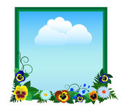 Pansies i niebo Zdjęcia Royalty Free