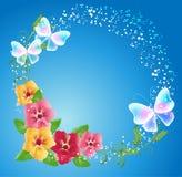 Pansies och genomskinliga fjärilar Royaltyfri Foto