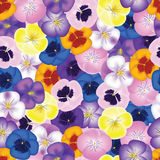 Pansies seamless background Royalty Free Stock Photos