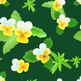 Pansies Seamless Pattern Stock Photo