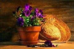 Pansies viola con il vecchio cappello di paglia Fotografia Stock