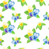 Pansies on white background-01 Royalty Free Stock Images