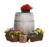 Pansies and Wooden Barrel Stock Photos