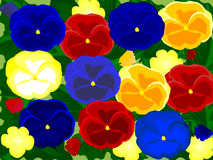 Pansy. Blue pansy on green background Royalty Free Stock Image