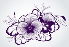 Pansy on background Royalty Free Stock Photo