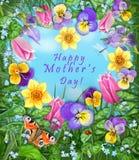 Το Pansy, τουλίπα, daffodil, Iris, λιβελλούλη, ladybug, πεταλούδα, ανθίζει το πλαίσιο καρδιών χαιρετισμός καλή χρονιά καρτών του  Στοκ Εικόνες